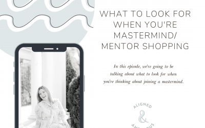 What To Look For When You're Mastermind/Mentor Shopping